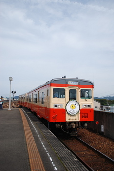 DSC_7037.JPG
