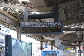 DSC_6527.JPG